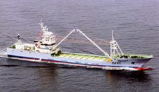 まき網付属運搬船